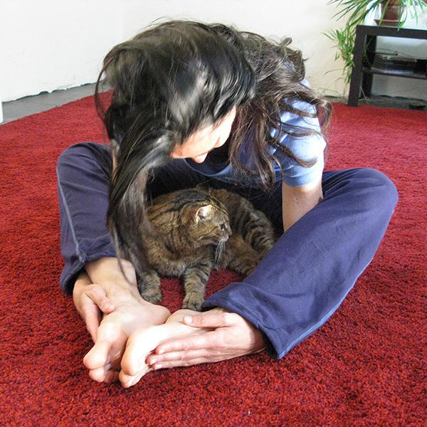 Kurmasana, avec le chat qui en profite !